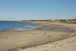 cape cod beaches in dennis