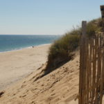 cape cod beaches in eastham
