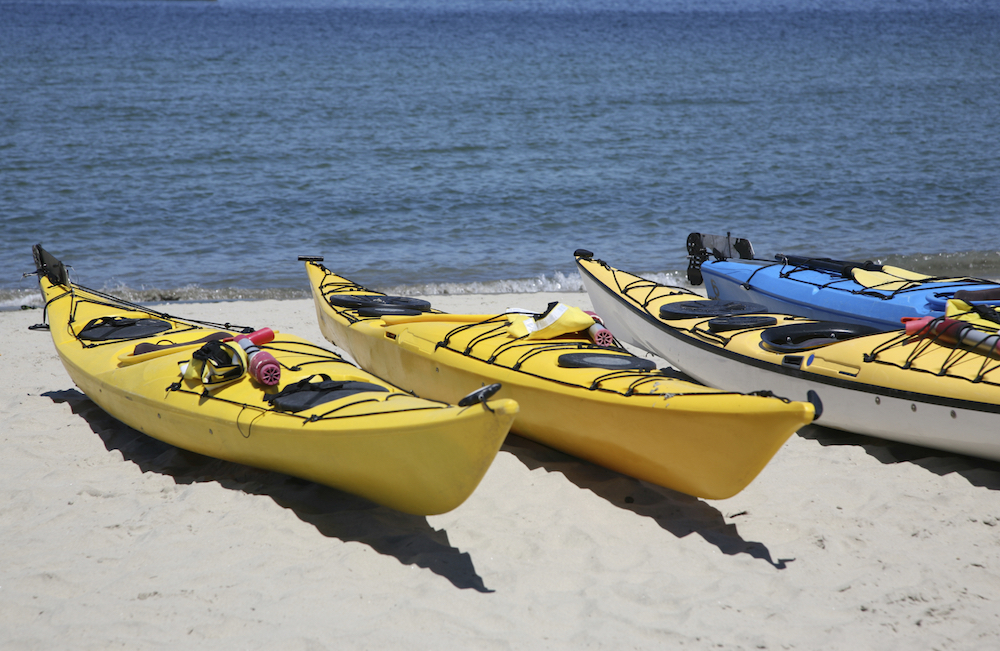 cape cod kayaking