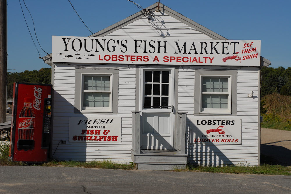youngs fish market