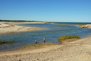 paines creek high tide